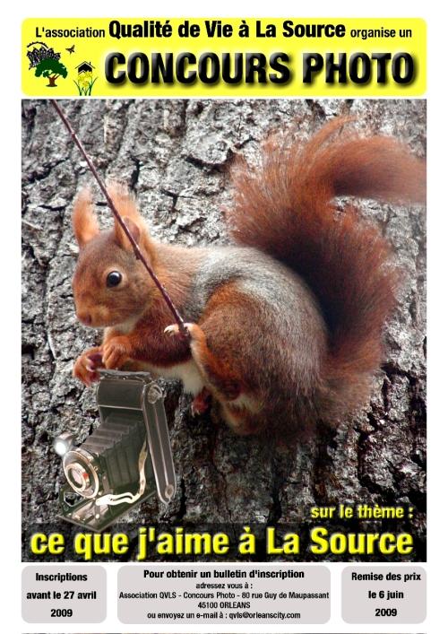 ecureuil-qvls1