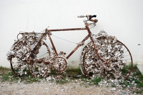 velo-insolite-betisiers-296395