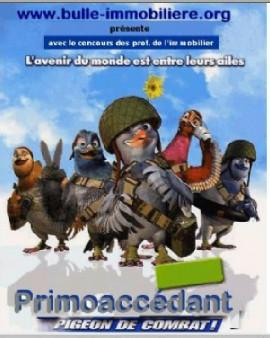 vaillant_pigeon_combat_270l