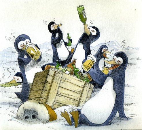 F11-Pingouins