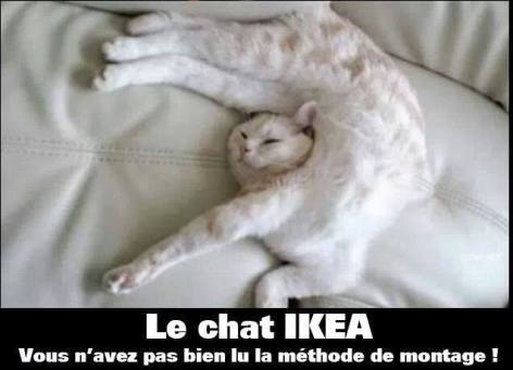 chat-ikea